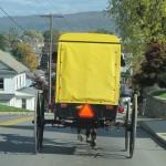 Alt Gemee buggy at Belleville PA