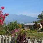 Mt Kinabalu beyond cottage garden